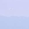 flight_5