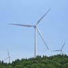 windfarm_1