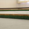 草の絵運動プロジェクト